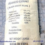 Sea Weed (Seaweed extract) - Rong Biển